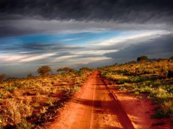 Rote Serengeti Kenia