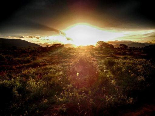 kenia-afrika-reise-bilder-189