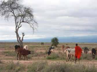 kenia-afrika-reise-bilder-430