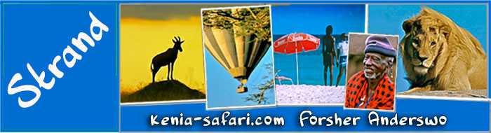Kenia Diani Strandurlaub hotel tauchen ozean windsurfen sportfischen