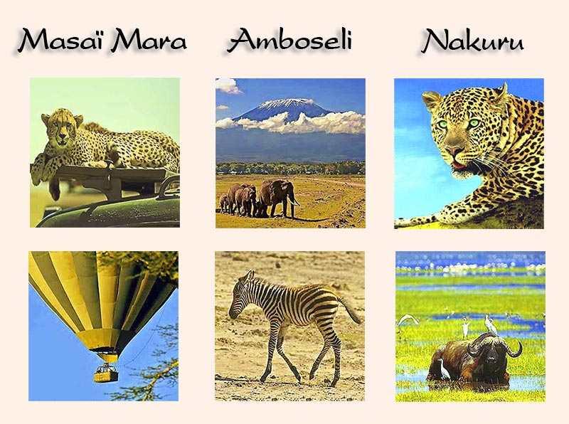 Kenia safari kleines kenia 9 tage