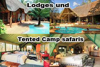 Safari mit gemischte Übernachtung für 4 Tage - im lodges tented camps -