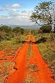 Rote Spur - kenia safari tsavo amboseli 4 tage privat ab Diani beach