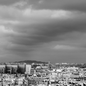 View of Paris from the top of Notre-Dame de Paris
