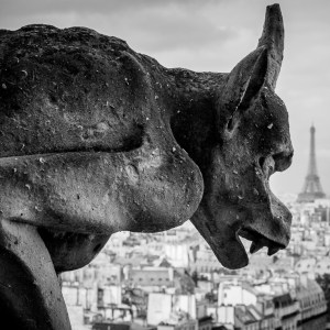 Gargoyle on top of Notre-Dame de Paris