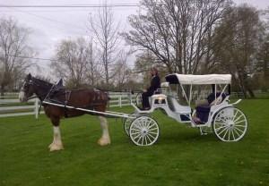 Osoyoos -equestrian wedding