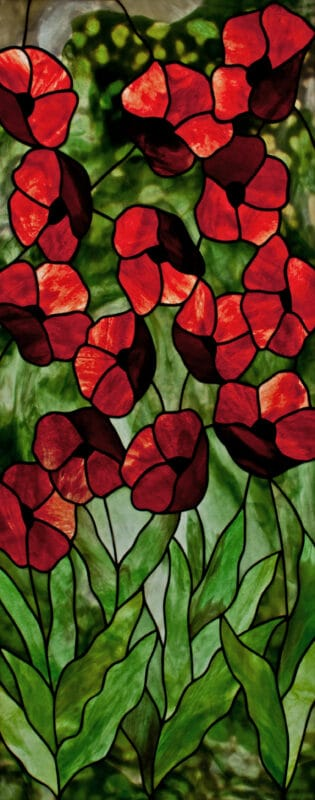 Youghiogheny Poppies.