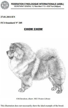 Chow Chow standard forside Kennel Hjelme