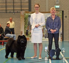 Chow Chow Kennel Hjelme Piuk Chow Possesses Black Passion og Stine Hjelme og Elaine Cannon