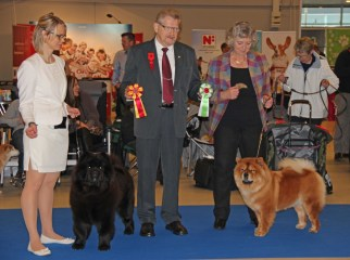 Chow Chow Kennel Hjelme Bao-Fang's Hong-Se Yue-Liang BIM og Piuk Chow Possesses Black Passion BIR Herning 2015