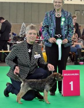 Kennel Hjelme Border Terrier Hjelme Lagavulin Amsterdam Vinder 2014