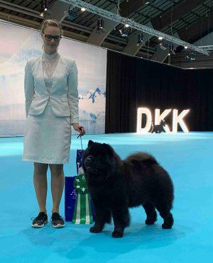 Chow Chow Piuk Chow Possesses Black Passion, Stine Hjelme Årets Hund 4 2018