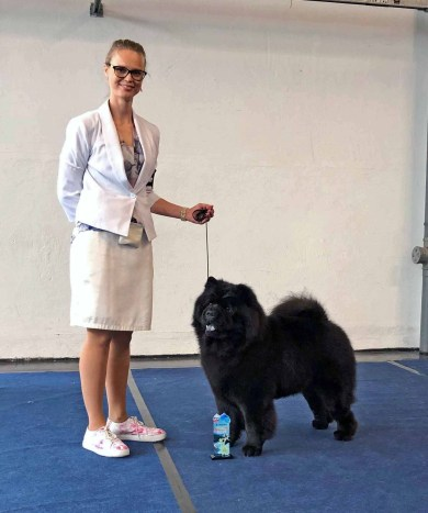 Chow Chow Kennel Hjelme Piuk Chow Possesses Black Passion, Stine Hjelme