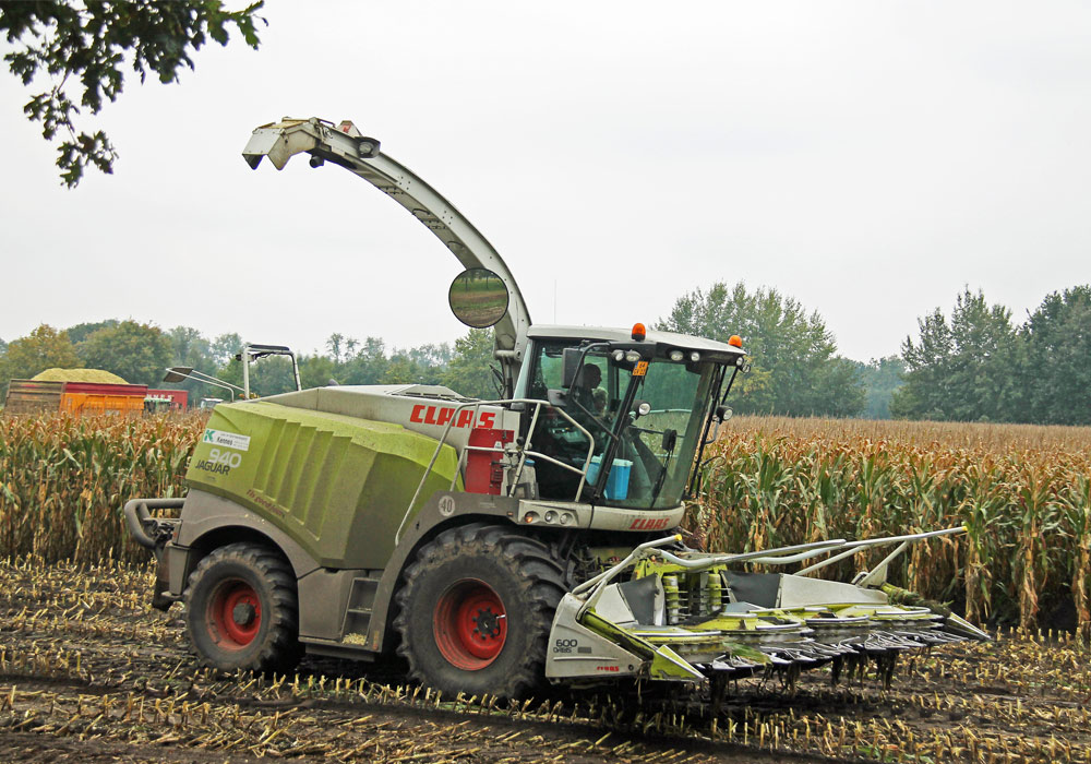 Loonbedrijf Kennes maïs hakselen