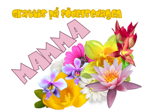 grattis mamma på födelsedagen Grattis Mamma… | KennethBloggen grattis mamma på födelsedagen