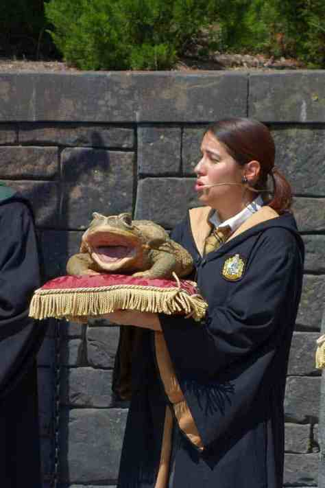 Harry Potter Frog Choir at Universal Islands of Adventure 2012