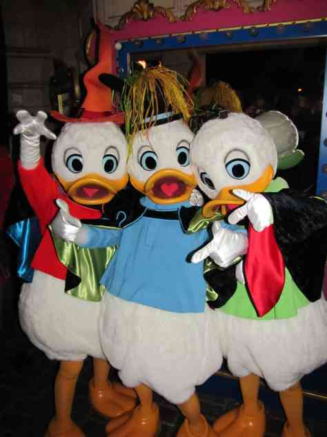 huey dewey and louie meet and greet archives kennythepirate com