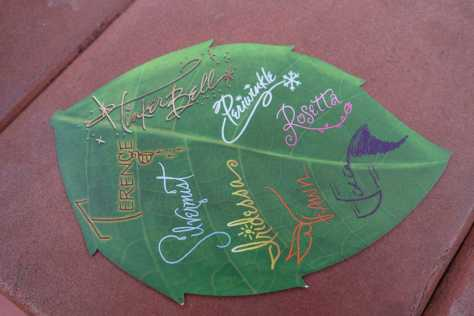 Limited Time Magic Fairies autograph card back