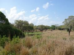 Senses of Africa tour at Disney's Animal Kingdom Lodge