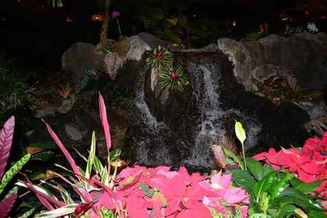 Polynesian Resort Christmas Characters and Christmas Decor (28)