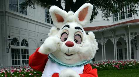 Easter Grand Floridian Resort Characters White Rabbit