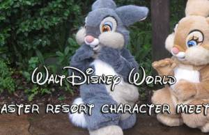 walt disney world easter resort character meets, disney world easter activities