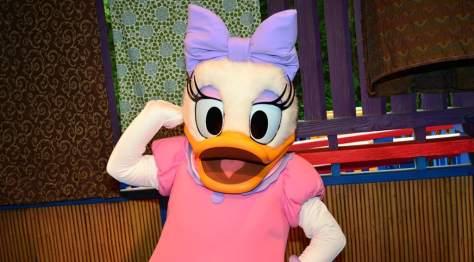 Daisy Duck preening for the camera at Animal Kingdom