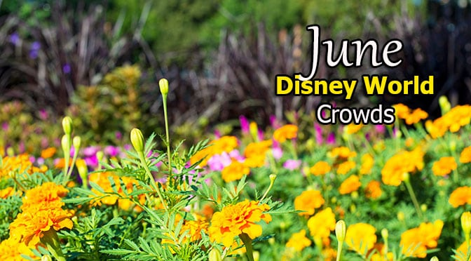 June 2018 Disney World Crowd Calendar with Park Hours and Extra ...