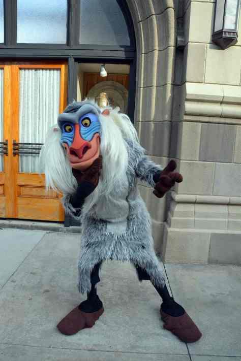 Disney's Hollywood Studios Character Palooza Rafiki
