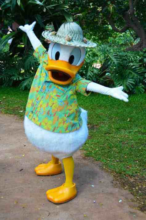 Donald Duck near the Menehune Bridge at Disney's Aulani in Ohau Hawaii