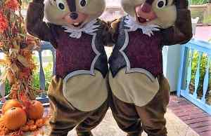 Chip n Dale in Halloween Costumes at Old Key West