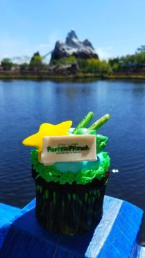 Earth Day Cupcake for Animal Kimgdom's Party for the Planet