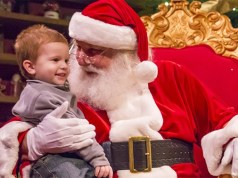 JOIN IN THE JOY AT BUSCH GARDENS TAMPA BAY'S PREMIER HOLIDAY EVENT, CHRISTMAS TOWN