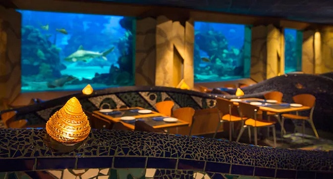 The Little Mermaid 30th Anniversary Menu Now Available at Coral Reef Restaurant