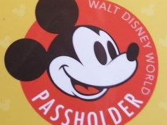 Disney Begins to Process Refunds for Annual Passholders on Payment Plan