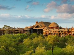 Updates to DVC Experiences Including Resort Hopping and DVC Exclusive Lounges