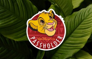 Disney World Gives Updated Information For Annual Passholder Preview