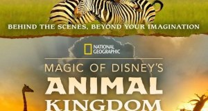 Magic of Disney's Animal Kingdom Premiering on Disney+