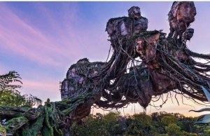 Major Technical Issue Causes Problems at Disney World this Morning