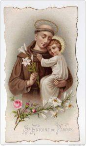 H. Antonius van Padua3