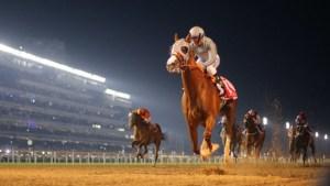 Dubai World Cup Horse Betting