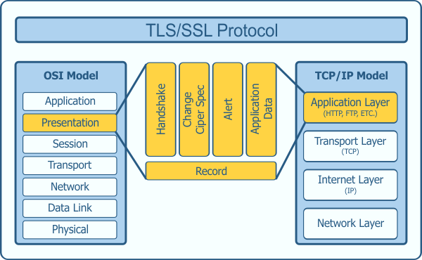 TLS Protocol in Network Model