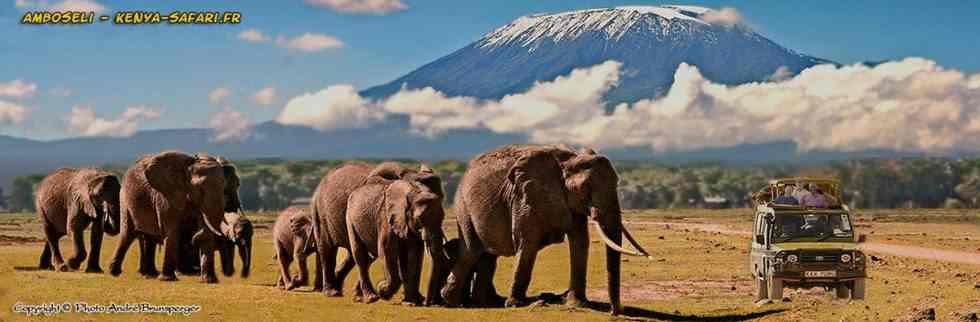 Amboseli parc du Kenya en afce du Kilimandjaro