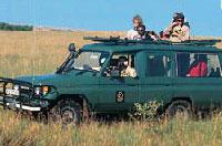 Véhicule 4x4 - Safari Chic grande migration