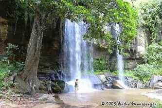 Chutes Sheldrick - Réserve de Shimba Hills Kenya