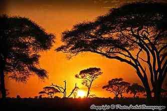Coucher soleil - safari Kenya extension gorilles Ouganda
