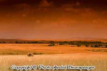 Paysage de pluie - Safari pendant les grandes pluies mousson au Kenya