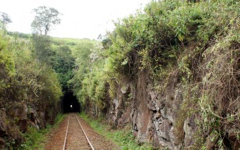 Photo of the entrance  to Buxton Tunnel pictured in Limuru, Kiambu County