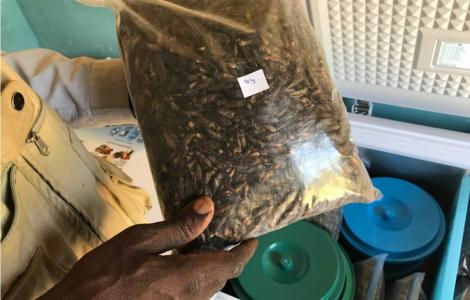 A bag of dried crickets.