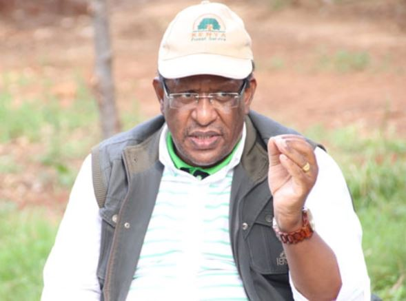 Dear Murkomen, respect Uhuru, your boss Ruto is just a 'clerk' to the president- CS Tobiko humiliates